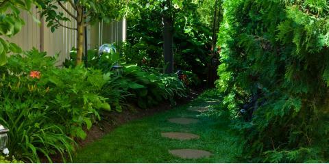 3 Landscape Tips For A Shady Yard The Gardener Missouri Nearsay