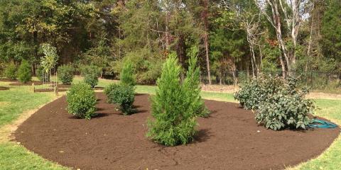 3 Landscape Design Tips, Greensboro, North Carolina