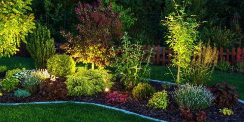 Landscape Design Tips for Water Garden Lighting, Columbia, Missouri