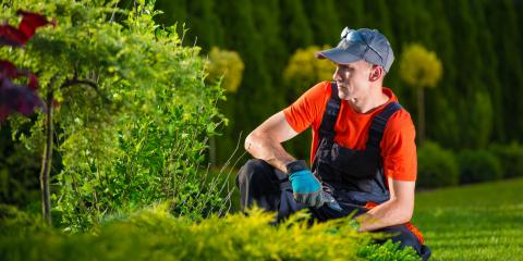 Understanding the Difference Between a Landscaper & Landscape Designer, Scottsville, New York