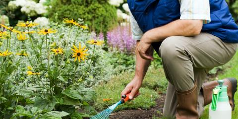 4 Reasons You Should Hire a Professional for Landscaping Design, Grant, Nebraska