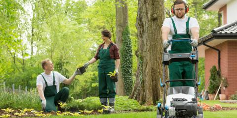 5 Reasons to Hire a Professional Landscaper, Centerville, Ohio