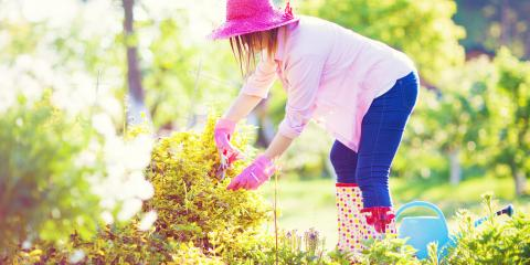 5 Tips for Keeping Up With Landscape Maintenance, Altadena, California