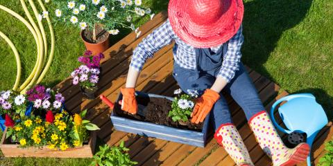 How Gardening Can Improve Your Mental Health, Northfield Center, Ohio