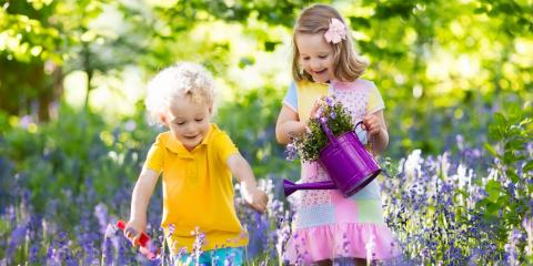 5 Ways to Get Your Children Excited About Gardening, Ludlow, Kentucky