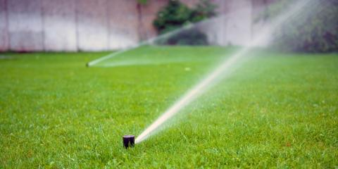 KY Hardware Store: Top 5 Tips for a Healthy Yard, Ludlow, Kentucky