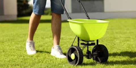 5 Fall Lawn Care Tips to Make Your Yard Look Great Come Spring, Xenia, Ohio