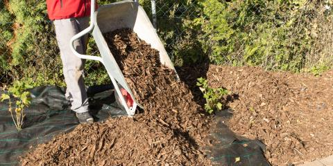How Often Should You Mulch Your Yard?, Missouri, Missouri