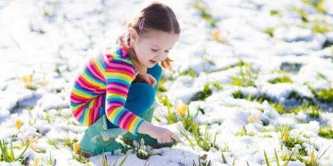 Landscape Design Company Shares 5 Winter Lawn Care Tips, Charlotte, North Carolina