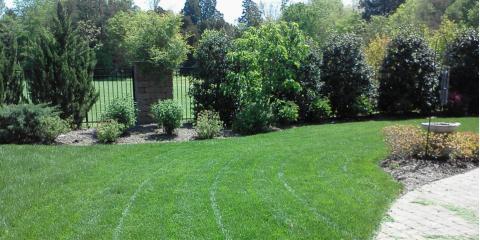 3 Ways Landscape Design Can Increase Your Property Value, Asheboro, North Carolina