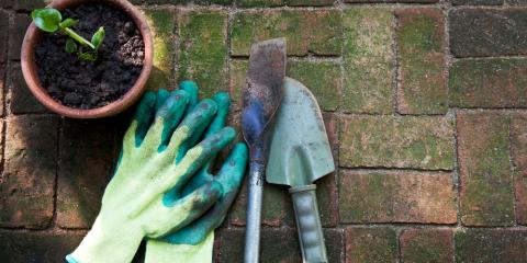Landscape Supplies & Tips to Change Up Your Garden, Ludlow, Kentucky