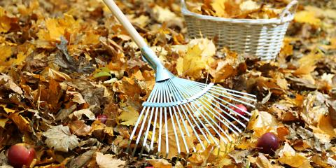 5 Fall Cleanup Tasks a Professional Landscaper Will Perform, Brookfield, Connecticut