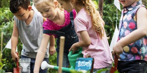 3 Landscape Design & Gardening Projects to Share With Your Kids, Lexington-Fayette, Kentucky