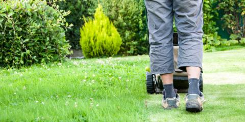 3 Landscaping Ideas for a Fresh Start This New Year, Ewa, Hawaii