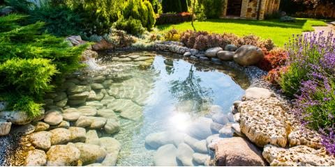 Top Reasons to Hire a Professional Landscaping Company, Medary, Wisconsin