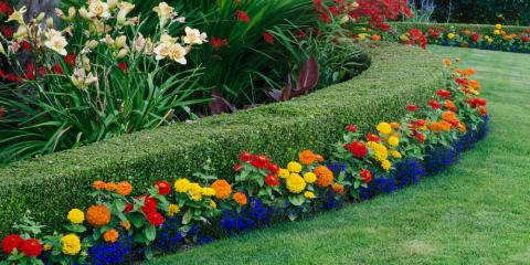 Prepare for Summer With These 3 Key Landscaping Tips, Jessup, Maryland