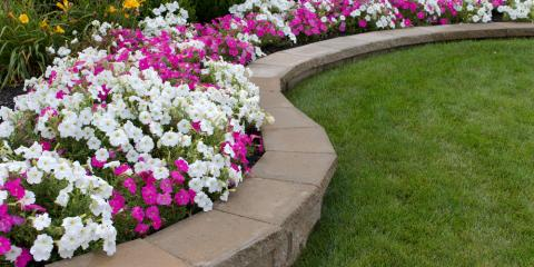 3 Qualities to Look For in a Landscaping Contractor, Keaau-Mountain View, Hawaii