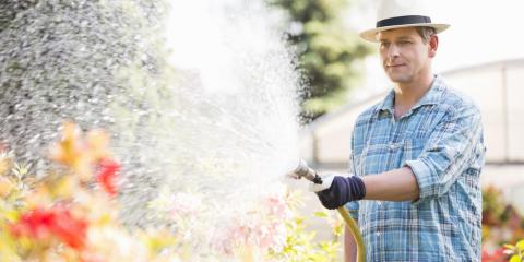 How Often Should You Water Your Landscaping?, Lancaster, South Carolina