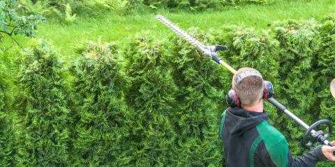 3 Qualities to Look for in a Landscape Service, Lincoln, Nebraska