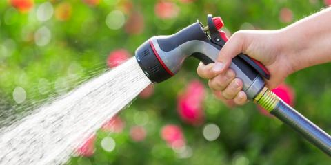 When Is the Best Time to Water Flowers? , Lincoln, Nebraska
