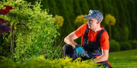 3 Reasons to Hire an Experienced Landscaping Service, Columbia, Missouri