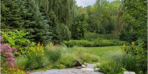 Where to Begin With Your Landscaping Project, Minneapolis, Minnesota
