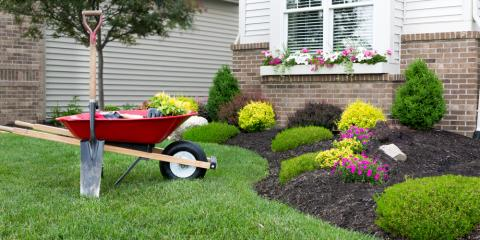 Top 5 Questions to Ask a Landscaping Professional, Coventry, Rhode Island