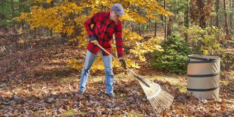 Do's & Don'ts of Fall Landscaping, Berrett, Maryland
