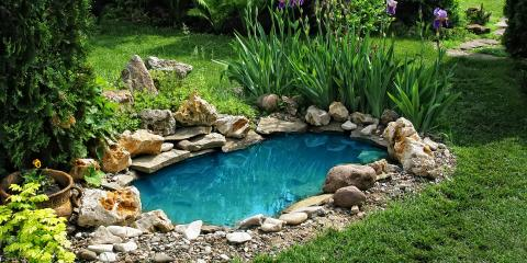 3 Factors to Consider Before Building a Pond in Your Backyard, Medary, Wisconsin