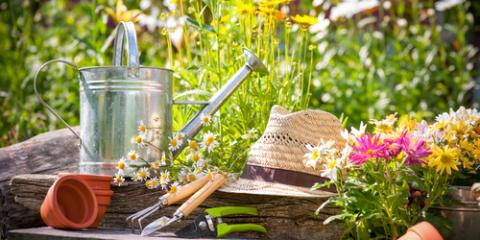 3 Landscaping Tips to Spruce Up Your Garden for Spring, Nicholasville, Kentucky