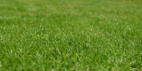 Your Handy Spring Landscaping Cleanup Checklist , Ocala, Florida