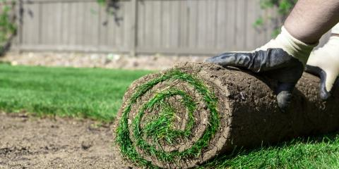 3 Benefits of Using Sod for Lawn Installation, Saratoga, Wisconsin