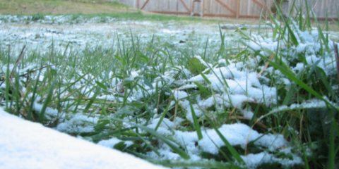 3 Tips to Bring Your Lawn and Garden Back to Life After Wintertime, Havana, Illinois