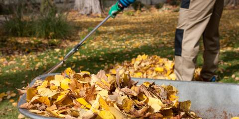 3 Lawn Care Tips to Implement During Fall, Scottsville, New York