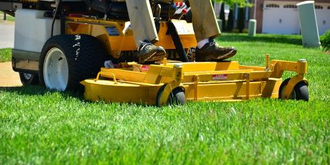 5 Crucial Lawn Care Musts for Fall, Hinesville, Georgia