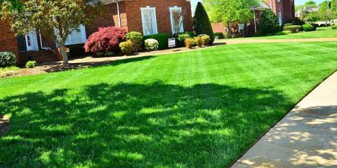 Nature Plus Lawn & Irrigation, Lawn Care Services, Services, Cincinnati, Ohio