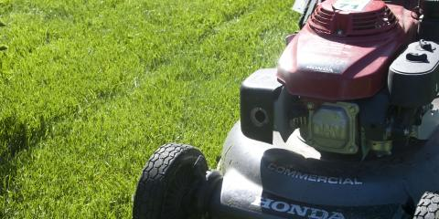 Top 5 DIY Lawn Care Tips From Kelly Lawn Landscaping, Anchorage, ...