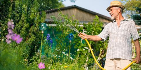 3 Lawn Care Tips for Summer, Cincinnati, Ohio