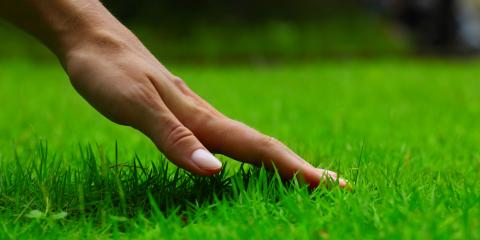 5 Lawn Care Tips to Keep Your Yard Looking Great During Late Summer, Enterprise, Alabama