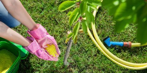 The 3 Main Ingredients in Fertilizer & Their Role, Ewa, Hawaii