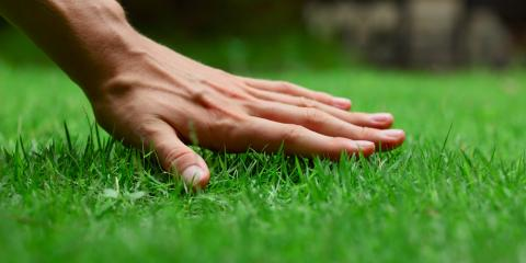 3 Key Tips For Exceptional Lawn Care , Hilo, Hawaii