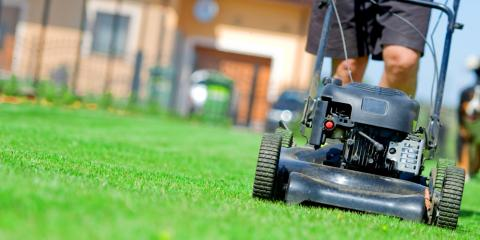 A Beginner's Guide to Proper Lawn Care, Honolulu, Hawaii