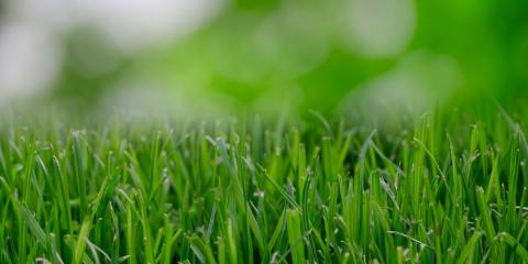 Prepare Your Lawn for Spring With Midway's Lawn Care Experts, Hinesville, Georgia