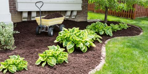 A Guide to Finding a Top Lawn Care Service, Asheboro, North Carolina