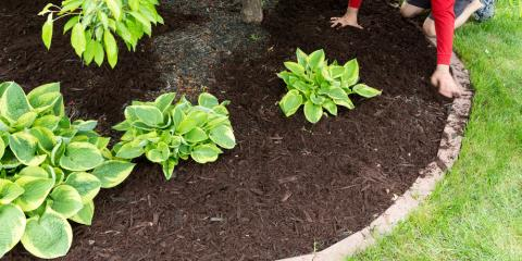 When Is the Best Time for Mulching?, Creve Coeur, Missouri