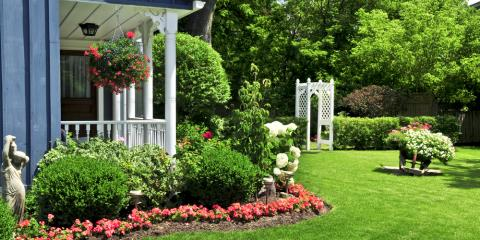 5 Easy Lawn Care Tips to Keep Your Yard Green & Lush, Parma, New York