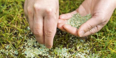 It's Not Too Late to Save Your Lawn From Winter Damage, Cromwell, Connecticut