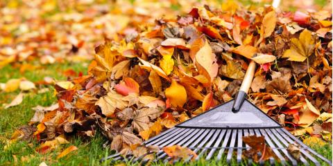 3 Lawn Care Tips to Help You Prepare for Fall, Grant, Nebraska