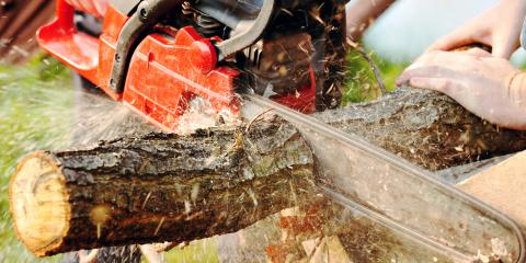 How to Choose the Right Chainsaw for Your Outdoor Project, Dothan, Alabama