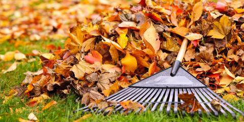 3 Lawn Maintenance Tips for Fall, Eldersburg, Maryland